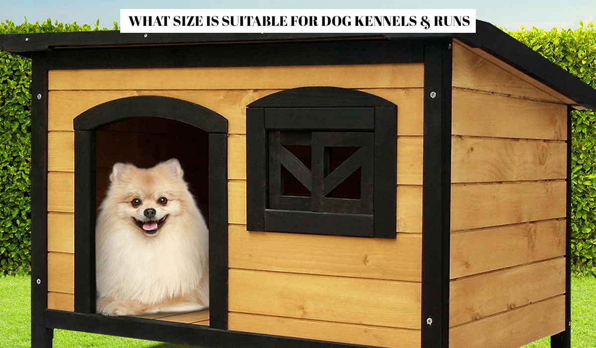 What Size is Suitable for Dog Kennels & Runs