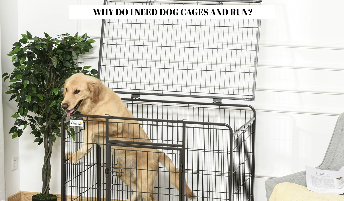Why do I need dog cages and run?